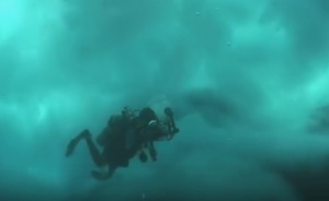 diversuckedaway