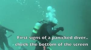 Diver Pancis