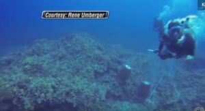 Diver Attacked By Criminal