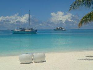 Maldives Dive Resorts