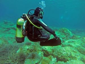 Relaxed Scuba Diver
