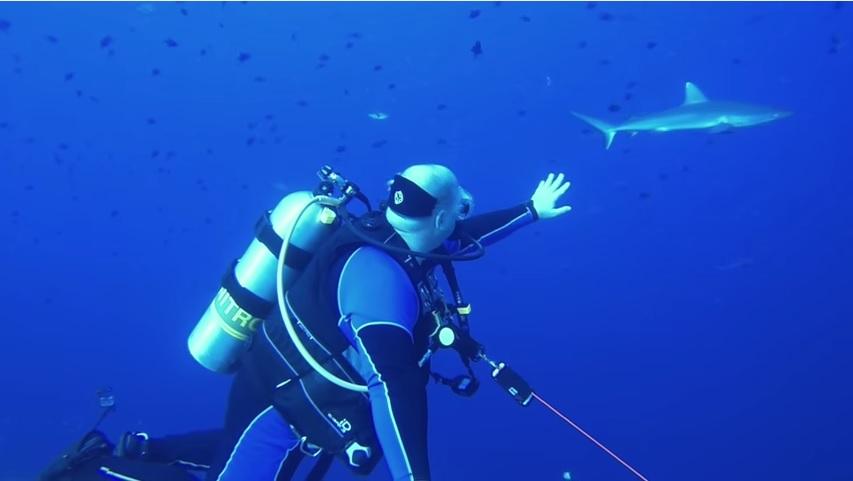 Reef Hook Diving Tips