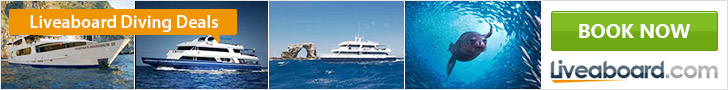 Liveaboard Scuba Diving Deals