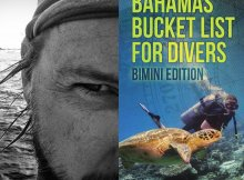 ahamas Bucket List for Divers: Bimini Edition is Amazon's Number 1 New release in Scuba Diving Books!