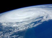 Hurricanes and sea life
