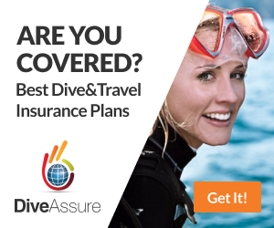 Dive & Travel Insurance