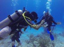 Scuba Diver Advice