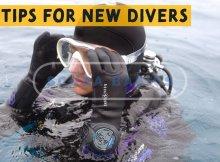Better Scuba Diving Tips