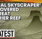Coral Reef Skyscraper Discovery Amazes Scientists