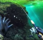 Fishing While Diving With Rod and Reel