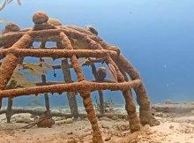 Harbour Village Bonaire Coral Reef
