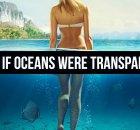 Clear Oceans