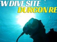 Dive Bermuda - Durgon Reef