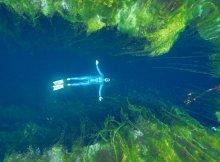 Freediving Sinkholes in Australia