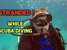 Bad Dive Guides