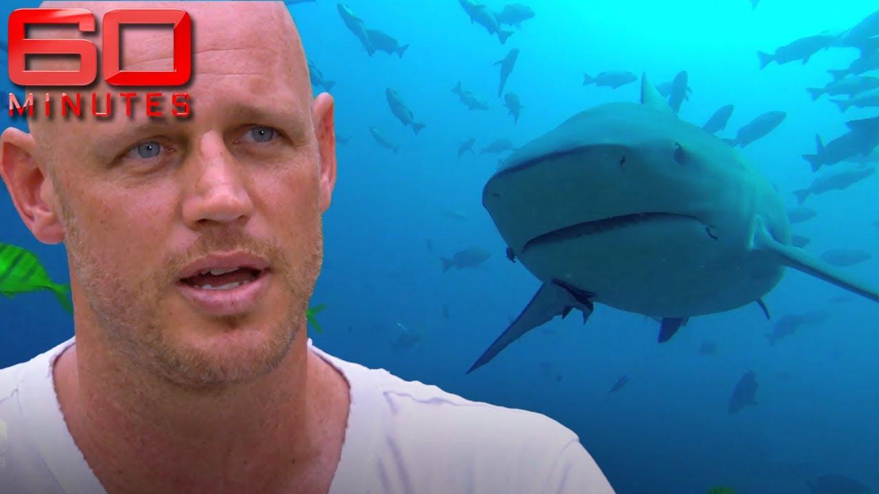 Bull Shark Attacks Diver
